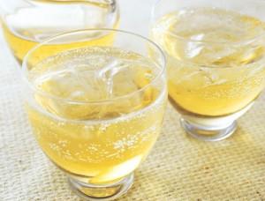 梅ジュース作り方!飲み頃や賞味期限は?白い泡や白カビは?