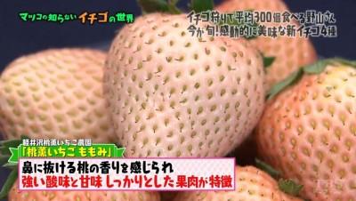 matuko-ichigo20