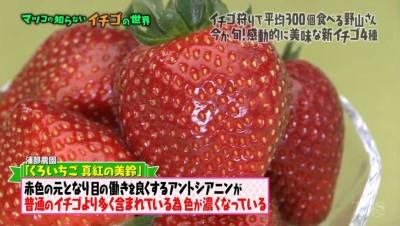 matuko-ichigo26